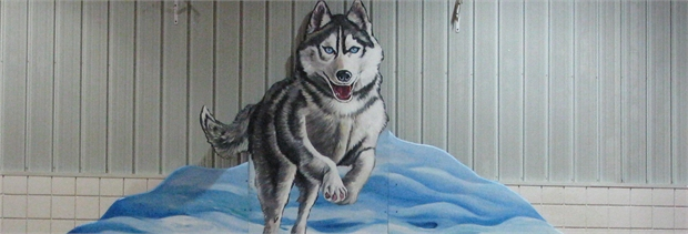 CHES Husky